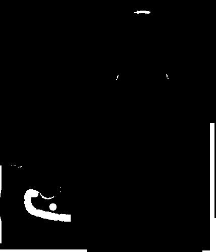 Cat Logo Cat Clinic
